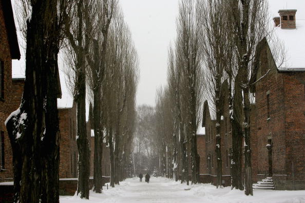 Two rows of brick buildings in Auschwitz with snow on the ground in late January.