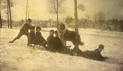Children on sled with dog, circa 1901-1902