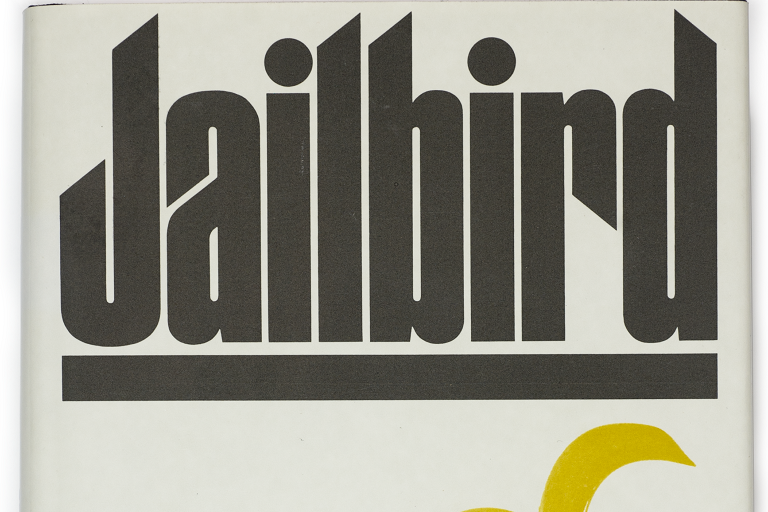 "detail of ""Jailbird"" book cover showing the book title"