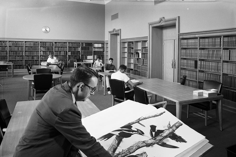 People reading books in a 1960s library, black and white phot.