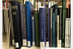 photo of a collection of books on witchcraft at Wells Library
